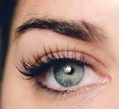 elle lash bar washington dc eyelash experts