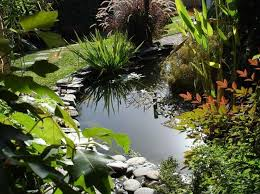 Small Garden Ponds Ideas Diy Small Garden Pond Pool Design Ideas