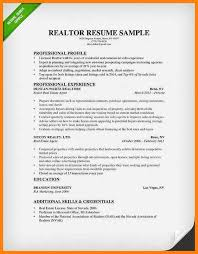 Resume Template For Real Estate Agents 11 Real Estate Resume Objective Letter Of Apeal