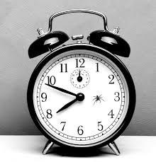 weird clocks the spider that waged a battle against a clock
