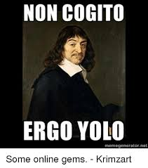 Meme Generator Online - non cogito ergo yolo memegeneratornet some online gems krimzart