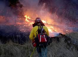California Wildfire Cat by Winds Subside But California Wildfires Continue To Rage