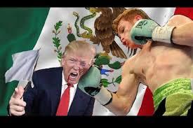 Canelo Meme - memes de la polémica batalla del canelo álvarez e consulta com 2018