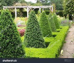 English Box Topiary - english landscape garden summer box hedging stock photo 33242047