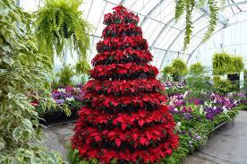 New Zealand Botanical Gardens Christchurch Botanical Garden Greenhouse New Zealand Stock Image