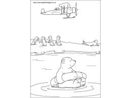 polar bear colouring pages kids colouring activities