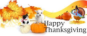 new albany floyd county animal shelter thanksgiving happy