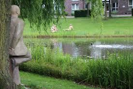 free images watch man tree water grass lawn meadow flower