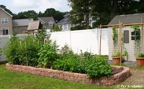 how to build a raised garden bed for vegetables pet scribbles