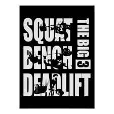 Squats Deadlifts And Bench Press 60 Best Gym Posters Physical Culturist Images On Pinterest Gym
