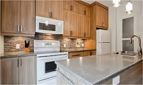 armoire de cuisine thermoplastique ou polyester rénovations choisir le matériau des armoires de cuisine