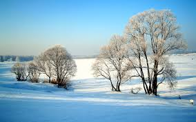 for your desktop winter nature wallpaper 42 quality winter