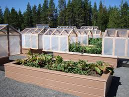 raised garden beds for sale amazing 11 greenhouse raised bed design garden beds for sale in