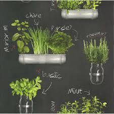 plantes cuisine papier peint plantes aromatiques gris vert papier cuisine et bain