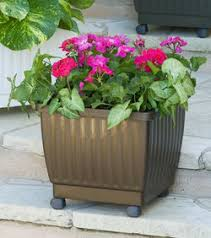 Planters On Wheels by Wheeled Planters Mobile Grow Carts U0026 Self Watering Rolling Planters