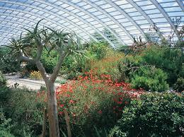 National Botanic Garden Wales National Botanic Garden The Enduring Gardener