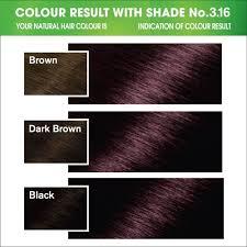 buy garnier color naturals shade 3 16 burgundy 70ml 40g online