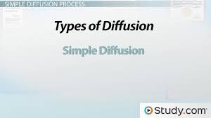 nursing resume exles images of liquids with particles png simple diffusion definition exles video lesson transcript