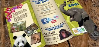 zoo brochure template brochure creative template part 6