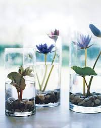 Indoor Plant Vases 27 Indoor Water Garden Ideas Small Garden Ideas