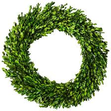 artificial boxwood wreath preserved boxwood leaves wreath 21 25 smith hawken target