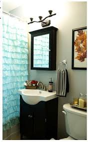 Small Bathroom Medicine Cabinet Chic Ruffle Shower Curtainin Bathroom Eclectic With Gorgeous Cabin