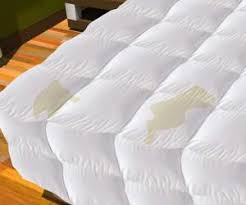 How To Wash Down Feather Comforter How To Wash And Clean Stains From Down Comforter Remove Stains