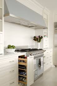 Contemporary Spice Racks Contemporary Spice Racks Kitchen Traditional With Clever Storage