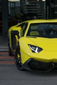 Lamborghini Aventador Limo - 263 best lamborghini images on pinterest car cool cars and