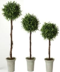 boxwood topiary set 3 artificial trees wedding centerpiece