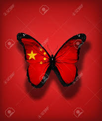 Chineses Flag Chinese Flag Butterfly Isolated On Flag Background Stock Photo