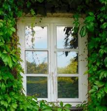 What Are The Different Home Styles The 7 Best House Windows Types For New Home Windows