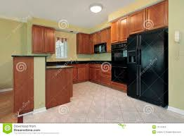 Kitchen Designs With Black Appliances by Pictures Of Kitchens With Black Appliances 25 Best Black