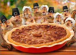 chipmunks deliver pie humorous thanksgiving card by avanti