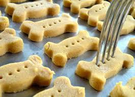 recipe for dog treats diy gluten free dog treats with pumpkin care2 healthy living