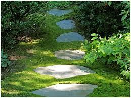 backyards stupendous landscaped pool pictures landscape design