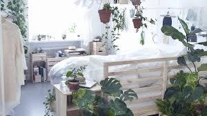 dormir avec une plante dans la chambre plante dans une chambre luxe stock dormir avec une plante dans la