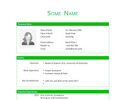 template layout resume