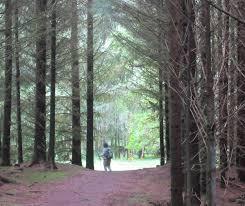 scotland walk ten thousand miles
