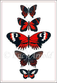 black and butterfly tattoos