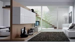 Modern Rugs Houston Living Room Livingroom Rugs Luxury Cheap Design Modern Living