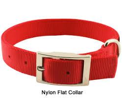 razork9 puppy collars for