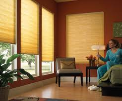 Cheap Motorized Blinds What Everyone Should Know About Motorized Shades