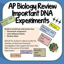 338 best science dna images on pinterest teaching biology