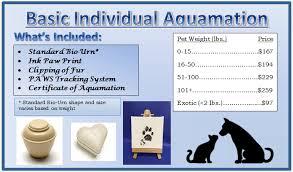 cremation cost cremation services pet cremation cost pet aquamation atlanta