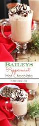 gingerbread martini recipe baileys peppermint chocolate 3 yummy tummies