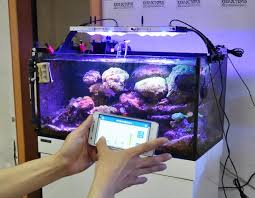 3 watt led aquarium lights 02 tjcp tlite 150w ctlite g4 app control 3 watt coral reef led