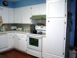 Kitchen Cabinet Fronts Replacement Replace Kitchen Cabinet Lazy Susan Replacement Shelf For Kitchen
