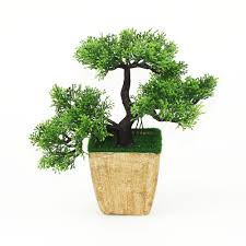 decorative trees for home free the trees potted green plants
