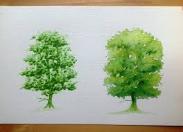 drawing a tree with promarker vs aquamarker tutorial youtube